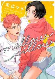 mellow-pillow