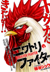 rooster-fighter
