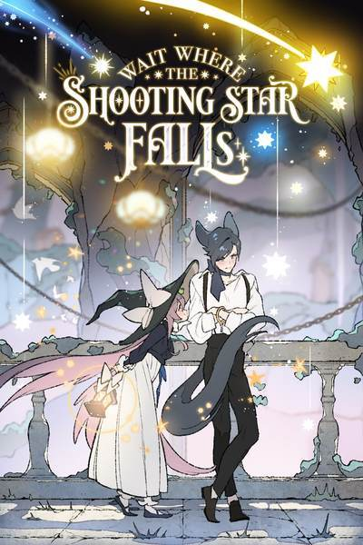 wait-where-the-shooting-star-falls-official
